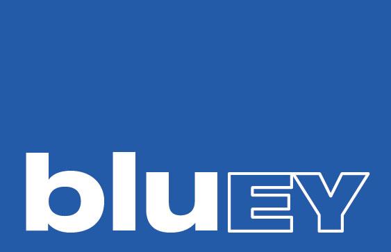 BLUEY logo | bluSkin